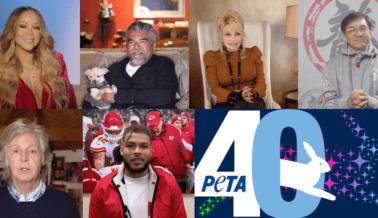 Nuestros Momentos Favoritos de la Fiesta del 40 Aniversario de PETA