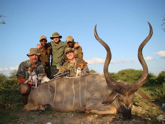 trophy hunting kudu