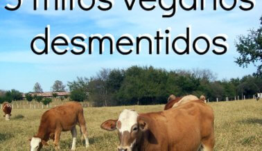 5 mitos veganos desmentidos