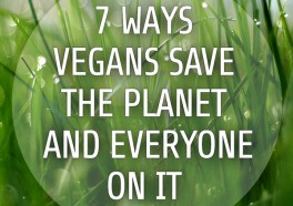 7 Ways Being Vegan Helps Save the Planet