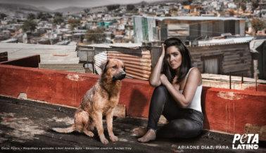 Ariadne Díaz: Los Perros son Miembros de la Familia, Déjalos Vivir Adentro