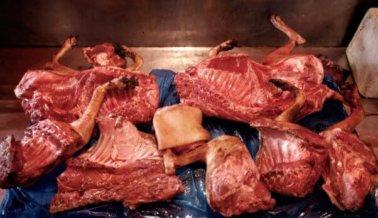 Venden carne de perro afuera de las olimpiadas