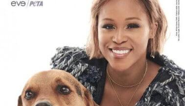 Eve Transforma su Indignación en Acción Por Perros Desatendidos