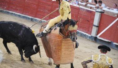 ¡Guerrero prohíbe las corridas de toros, los carruajes tirados por caballos y más!
