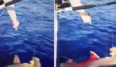 ¿Estrella de 'Siesta Key' de MTV le disparó a un tiburón martillo? Las autoridades investigan
