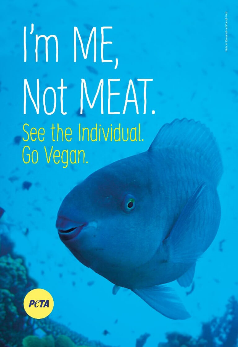 Im me not meat banner