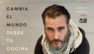 Joaquin Phoenix: Cambia el Mundo desde tu Cocina. Sé Vegano