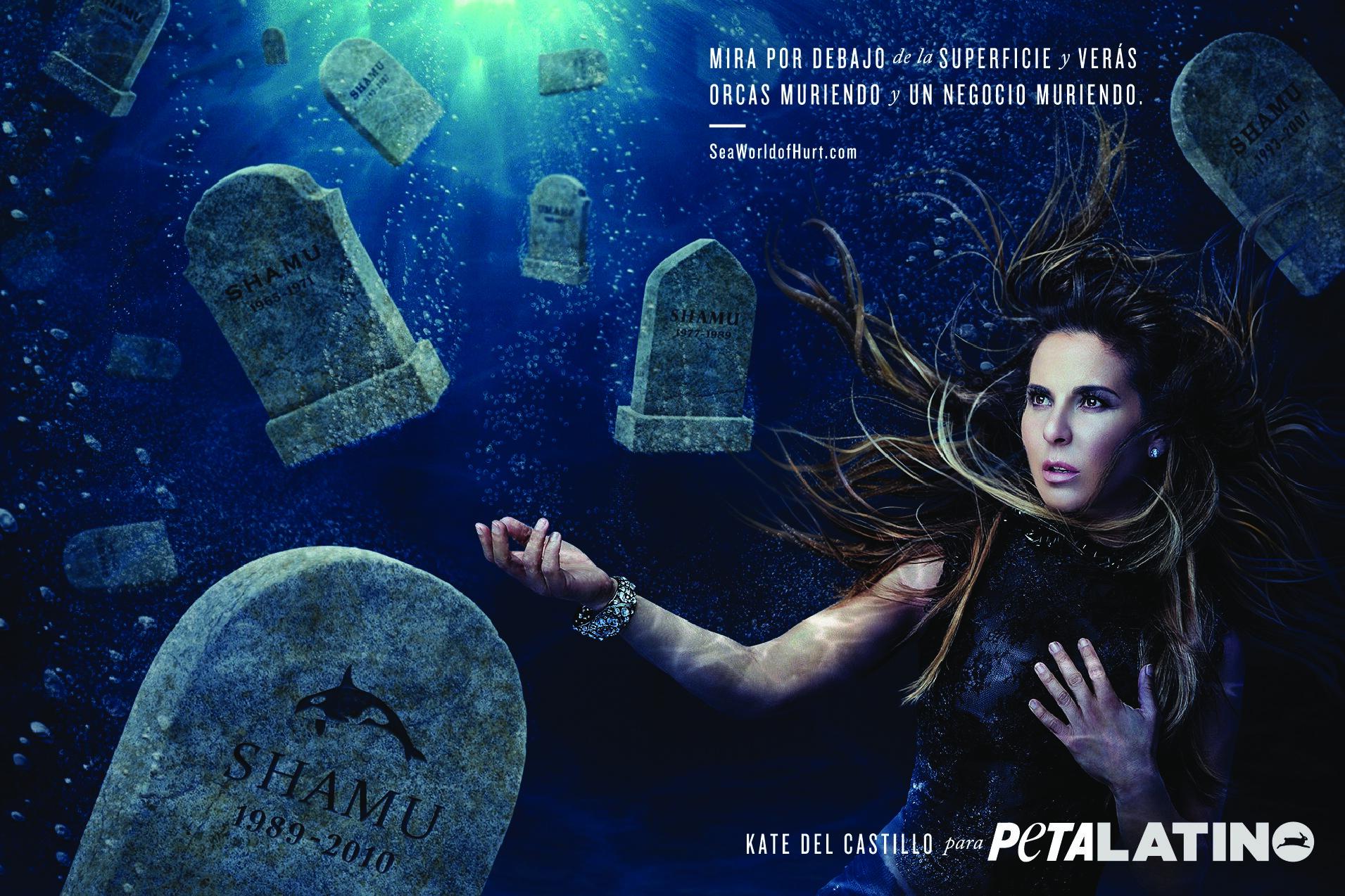 Kate del Castillo: Mira por debajo de la superficie