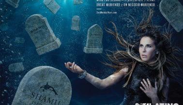 37 Muertes – Kate del Castillo Pone al Descubierto el Horror en SeaWorld