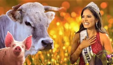Miss Universo Vegana le Muestra al Mundo lo que Hace el Poder de las Plantas