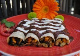 Enchilada and Quesadilla Recipes That Will Wow Your Family and Friends