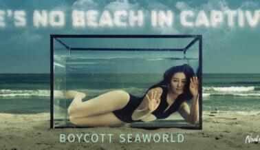 """Noah Cyrus a SeaWorld: """"Envíen a Las Orcas a Santuarios"""""""