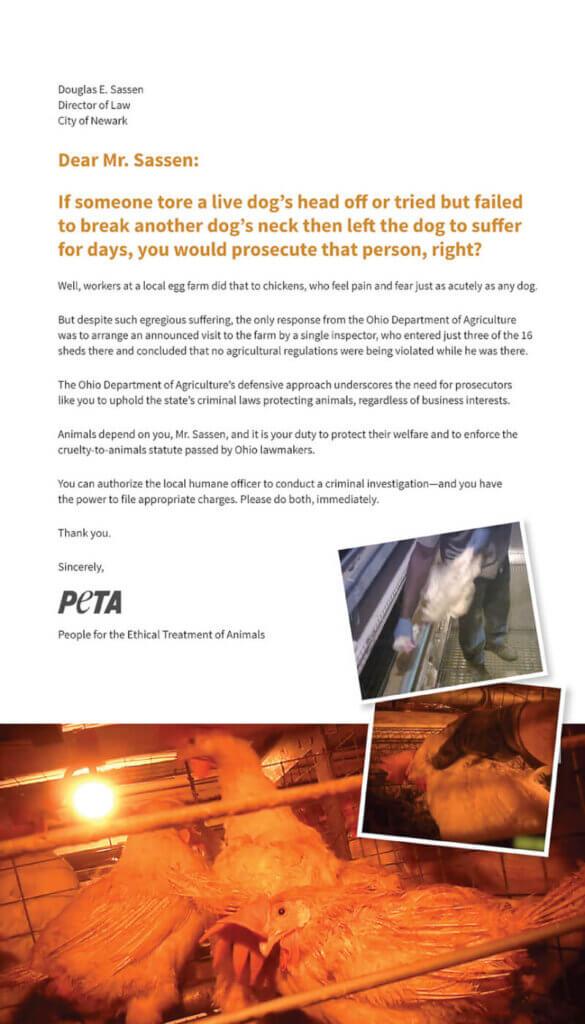PETA's Ad about Ohio Egg Farm Investigation