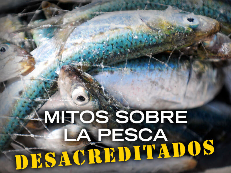 PETALatino-social-fishing-myths-debunked-spanish