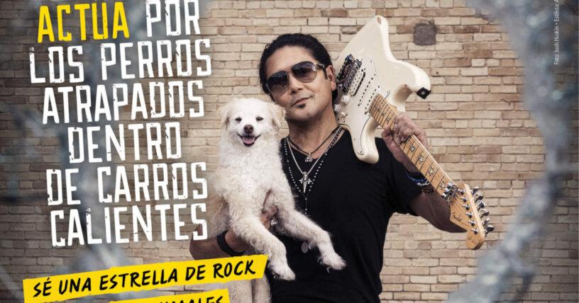 Chris Pérez: Actúa por los perros atrapados dentro de carros