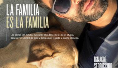 Ignacio Serricchio: Los Perros Son Familia, Tratémoslos de Ese Modo