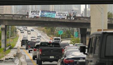 PETA Latino Colgó Enorme Pancarta Exigiendo la Libertad de Lolita