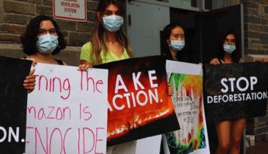 ¿Se Destruirá Toda la Amazonia Debido a la Carne?