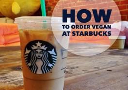 Your Guide to Vegan Starbucks