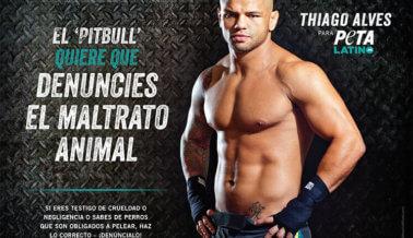 Thiago Alves Peso Wélter de la UFC Lucha Contra el Maltrato Animal