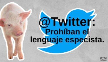 Twitter Está Sacando la Basura: ¿Botará También el Lenguaje Especista?