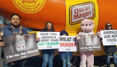 ¡Insta a Oscar Mayer a Dejar la Salchicha y Fabricar Carnes Veganas!