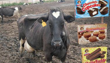 Insta a Little Debbie a Mostrar Compasión por las Vacas y las Gallinas Ofreciendo Bocadillos Veganos
