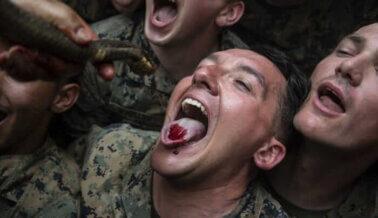 PETA a Los Marines: Terminen con los Retrógrados Actos Machistas
