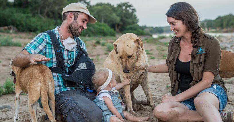 5 Actividades Respetuosas con los Animales Para Hacer Con Papá