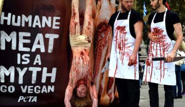 FOTOS: 'Matadero' al aire libre en el centro de Londres conmemora el Día Mundial del Veganismo