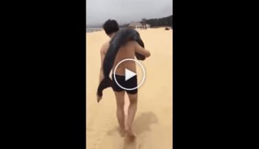 La gente entra en cólera por el video de hombre que roba un delfín de una playa
