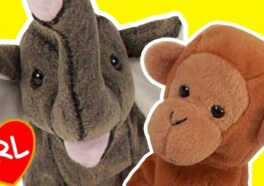 We Treated Beanie Babies Like Real Animals and It Got Weird