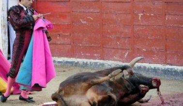 11 Razones para sacar el Encierro de los toros de tu lista de cosas por hacer antes de morir