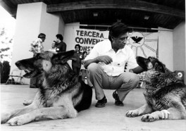 Human Rights, Animal Rights, and Nonviolence: César Chávez's Lasting Legacy