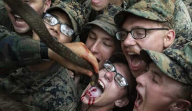 ¡Victoria! Ningún Animal Fue Decapitado ni Comido Vivo en Ejercicio de Entrenamiento de Marines