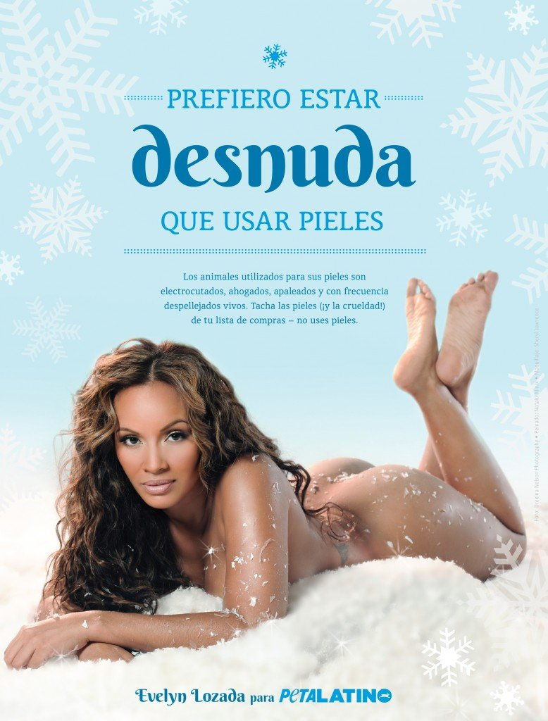 evelyn-lozada-peta