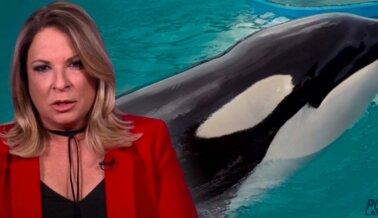 Ana Maria Polo Presta Su Voz a Lolita, la Orca Atrapada en Miami Seaquarium