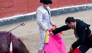 ¡Victoria:  Prohíben el Barbárico Festival 'Toro de la Vega'