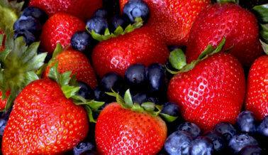 Veganismo y nutrición correcta
