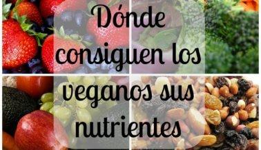 Dónde consiguen los veganos sus nutrientes