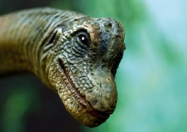 The Next 'Jurassic Park' Movie Just Might Change the Way You Look at Animal Rights