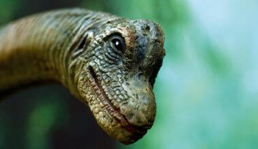 La próxima película de 'Parque Jurásico' justo podría cambiar tu forma de ver los derechos de los animales