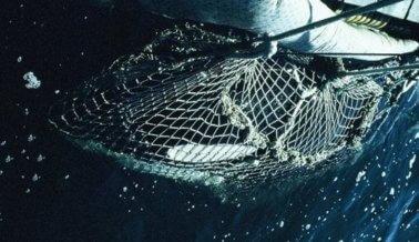 'Anchorman 2' Le Da a la Audiencia Una Razón Tan Grande Como Una Ballena para Descartarla