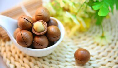 Alimentos veganos con muchísima proteína