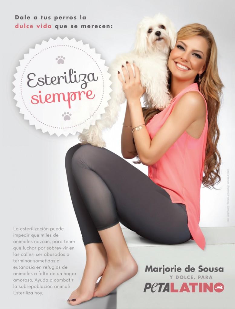 marjorie-de-sousa-peta-latino-esteriliza-adopta