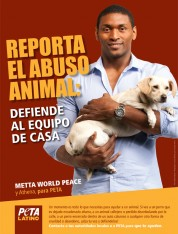 Metta World Peace: Siempre reporta el abuso animal