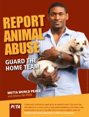 Metta World Peace: ALWAYS Report Animal Abuse