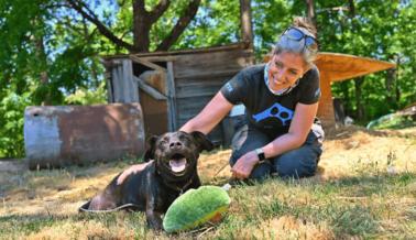 Llegaron las Olas de Calor y También los Trabajadores de Campo del Proyecto Animales de la Comunidad de PETA