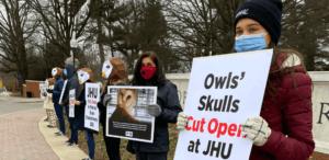protesta contra experimento de lechuzas
