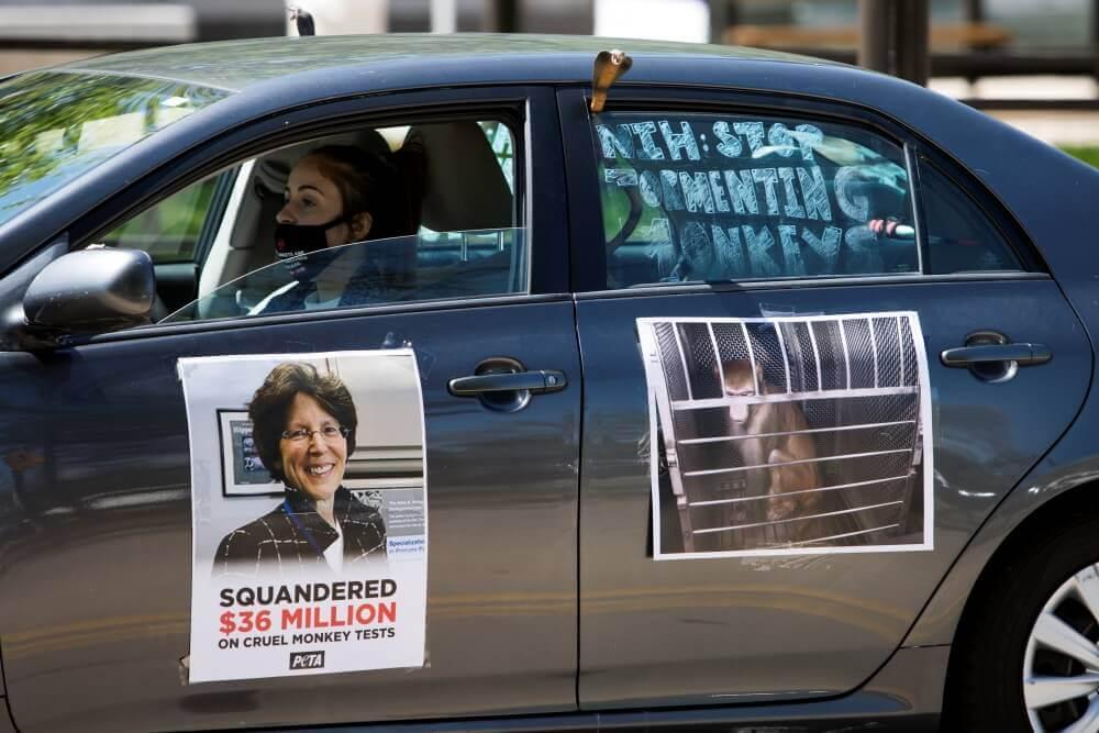 protestas desde los autos en Maryland